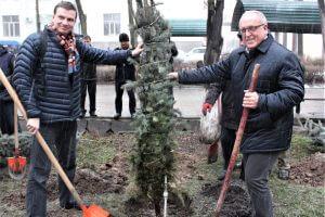 Гости из Российской Федерации посадили ели на аллее КГМА